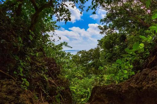 A view of Kudaka Island from Sefa Utaki, the highest sacred place in Okinawa