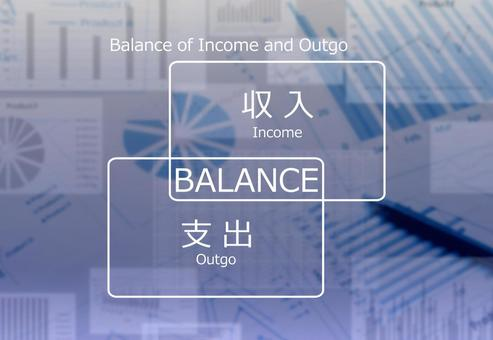 Household balance image