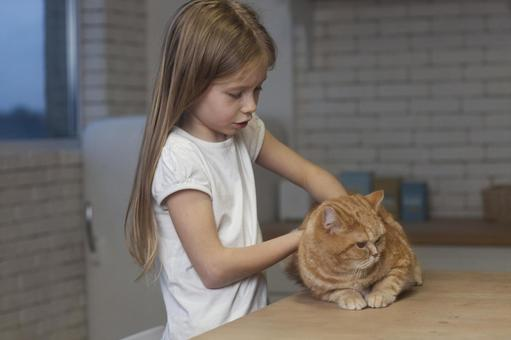 Girl catching a cat