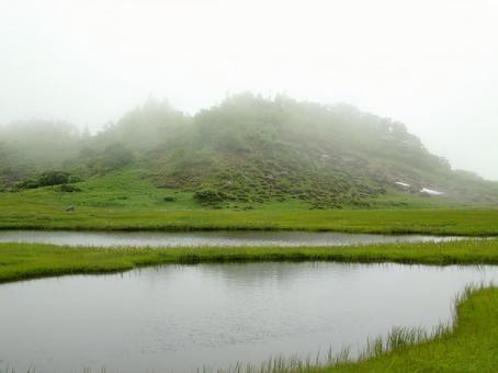 Dense fog landscape