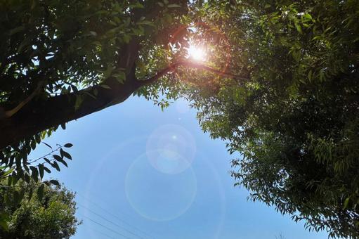 Sunbeams landscape desktop image