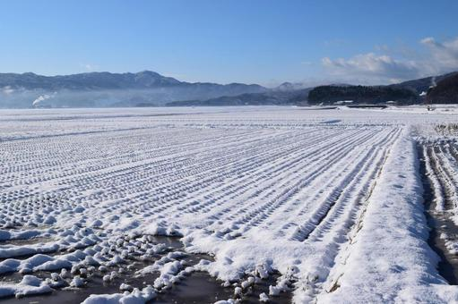Paddy field with snow Yamagata Prefecture