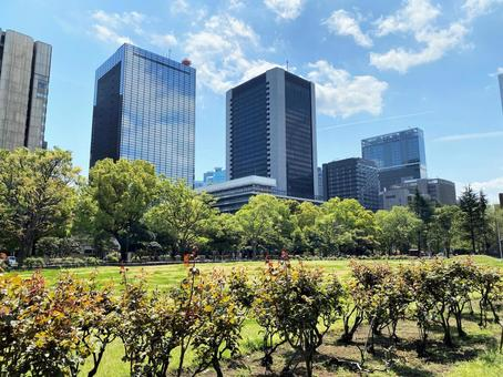 Spring parks and urban buildings