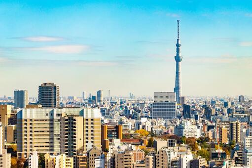 View of Tokyo cityscape Sky Tree