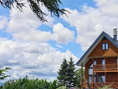 Log house and sky