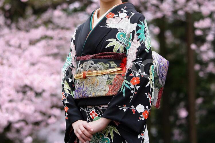 着物 成人式 Japan Kimonoの写真