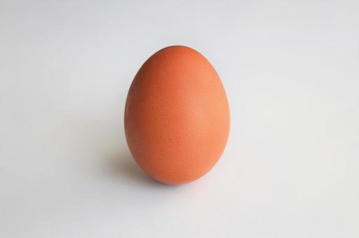 The egg (white background, PSD available)