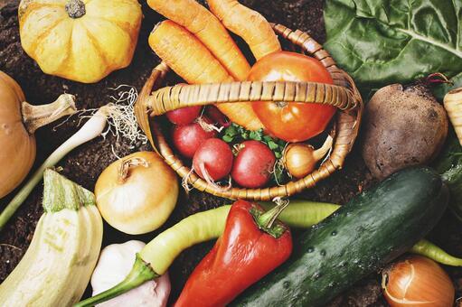 Vegetables 24