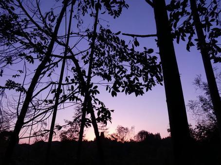 Evening sky gradation
