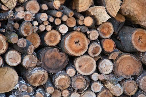 Lots of logs 2