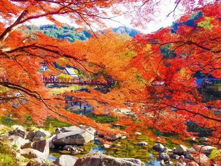 Fragrant Karami River in autumn