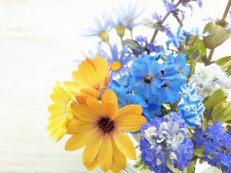 時令花植物背景骨生植物和藍色的花束