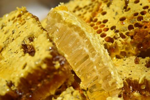 Nest honey immediately after removal from the honeycomb Close-up Material Background SDGs Sustainable Natural Environment Sustainable Carbon Neutral