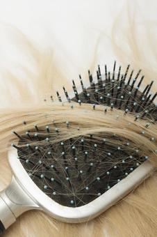 Hair and brush 12