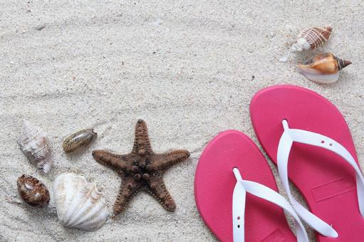 Beach sandals and shells 1