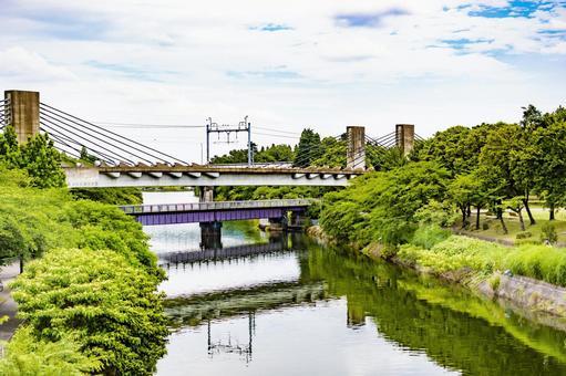 River trees Overpass bridge Blue sky