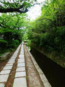 Philosophy Road