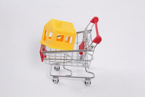 Shopping cart 18