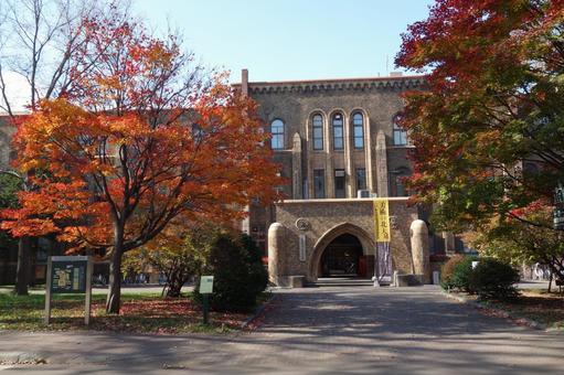 Hokkaido University General Museum