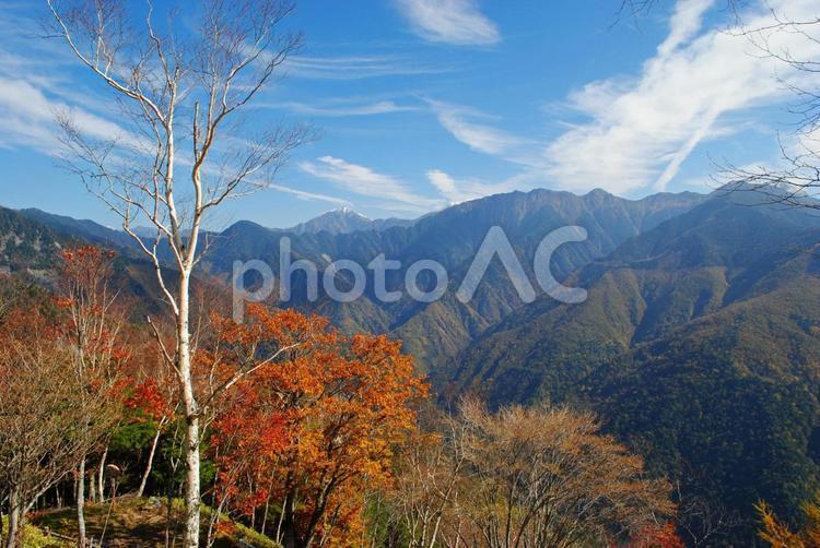 しらびそ高原から望む南アルプスの写真