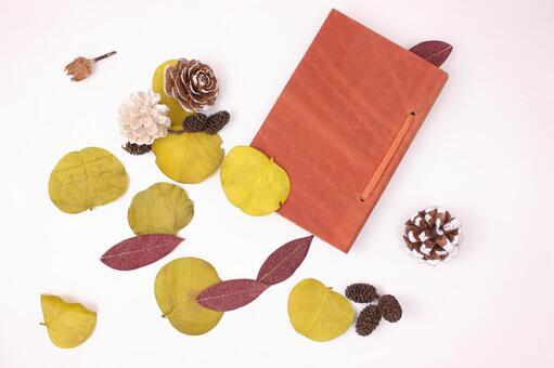 수첩과 낙엽 2