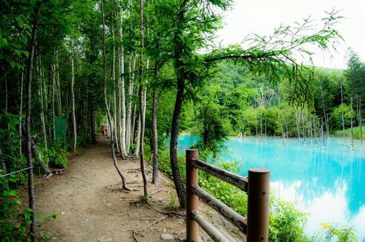 Shirogane Blue Pond (Biei Town, Hokkaido)