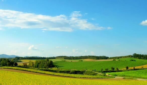 Biei Hill Blue sky and hilly area