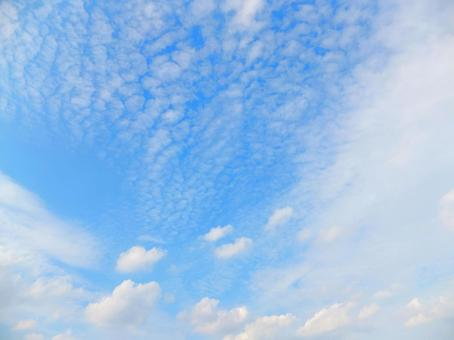 Blue sky and white clouds (cirrocumulus / scale clouds) It will rain tomorrow.