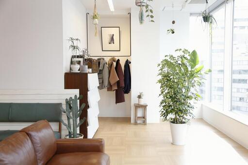 Plants and fashionable room 2
