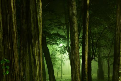 To deep forest