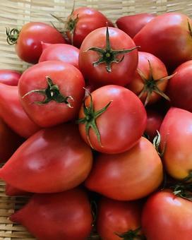 Fruit tomato (6)