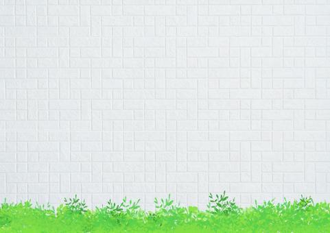 Eco green 2_ white wall