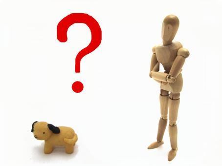 Pet's question
