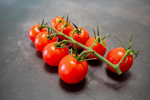 Lined red tomatoes