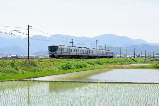 225 series special rapid train 001 that runs on the railroad and countryside