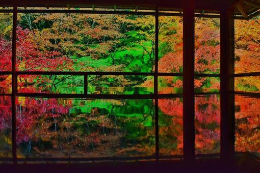 Fantasy red leaves