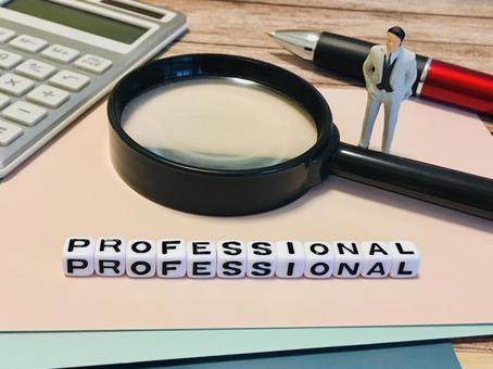 Professional / Professional / Expert