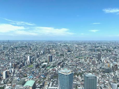 도쿄 고층 빌딩 푸른 하늘 여름