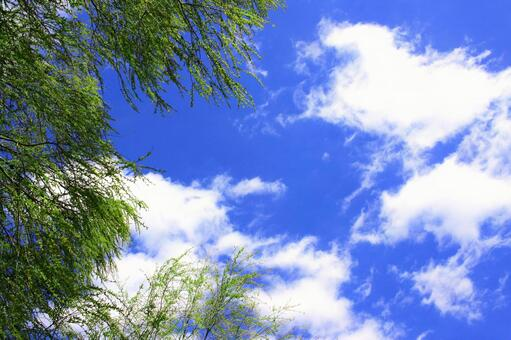 Refreshing blue sky background material