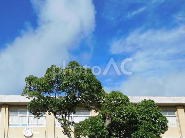 学校校舎と青空(朝8時の登校時間)背景素材の写真
