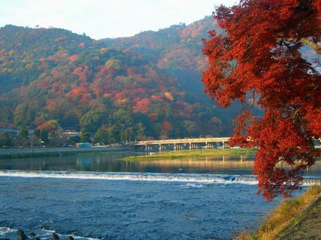 Autumn leaves Arashiyama Togetsukyo