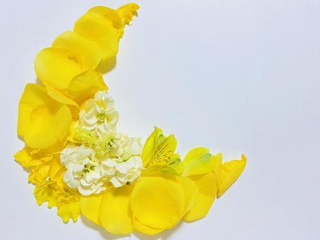 노란 꽃 초승달