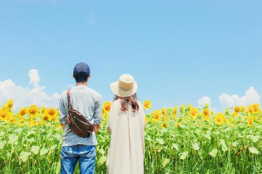 Sunflower field and couple