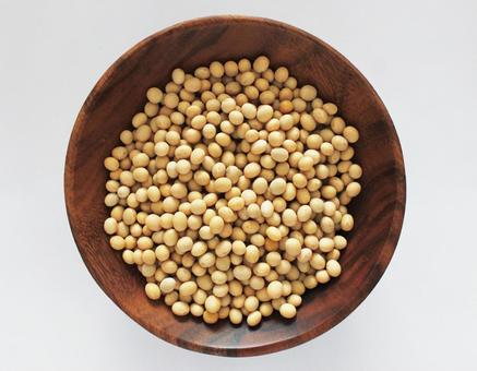 Soy beans protein