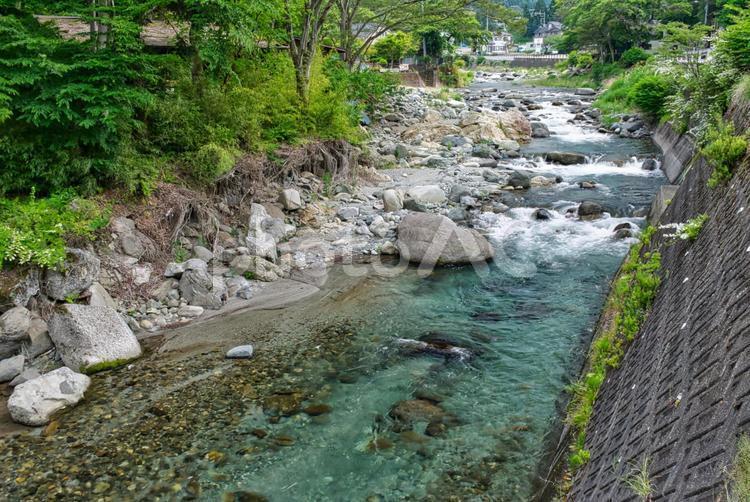 道志川の写真