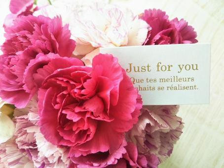Carnation flower gift gift mother's day