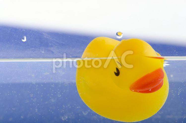 水中のアヒルのおもちゃ1の写真