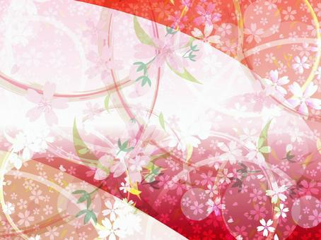 Cherry blossoms wallpaper background 28