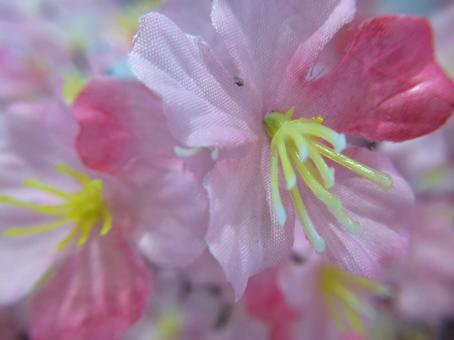 벚꽃의 조화의 근접 촬영