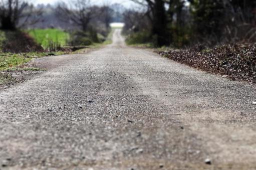 길 시골 길